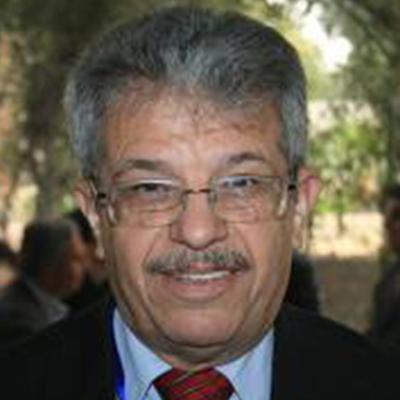 Prof. Zeidan Kafafi